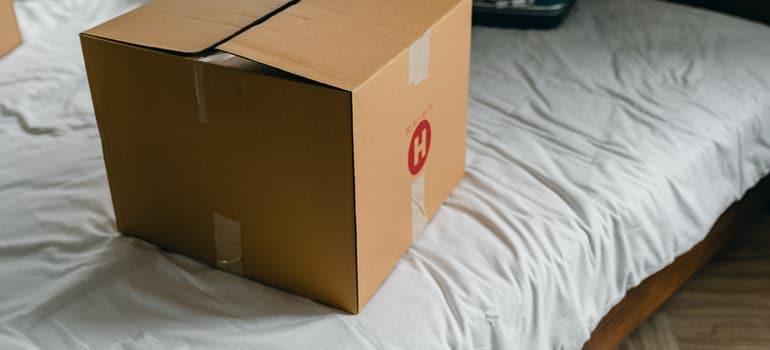 Cardboard box on bed