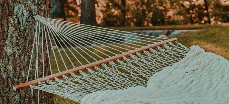 a hammock in the backyard