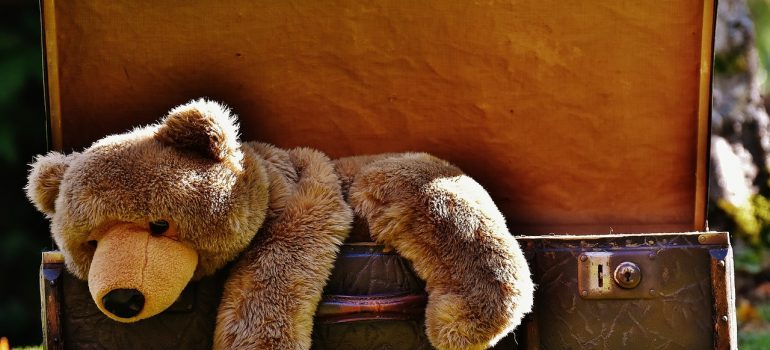 Old teddy bear in the suitcase