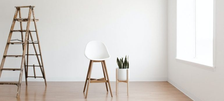 Chair and ladder in the room with a plant