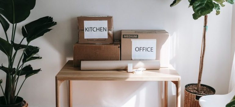 labeled boxes on the table