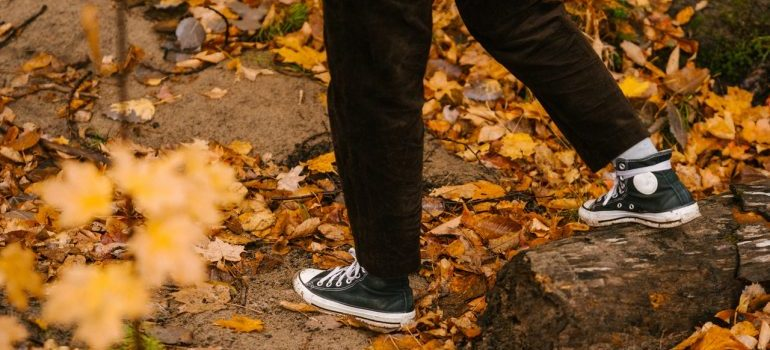 Person walking in the fall.